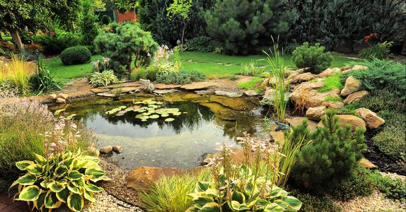 Ландшафтный дизайн и садово-парковое строительство с присвоением квалификации «Дизайнер ландшафтного проектирования»